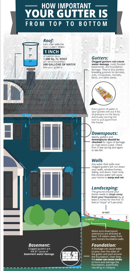 Gutter Cleaning Infographic
